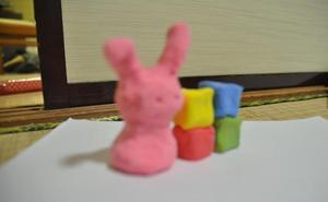 家と同化しているウサギ.jpg