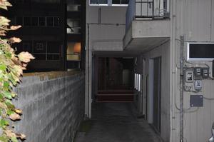 神社から見た国道側.jpg