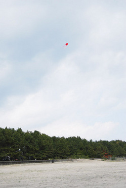 tako3.JPGのサムネール画像