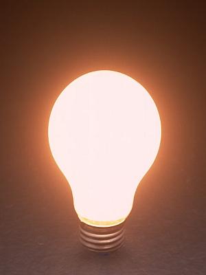 もちろん、デンキウナギに電球はついてません
