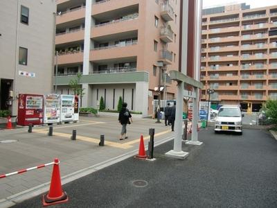 hatsu_016.jpg