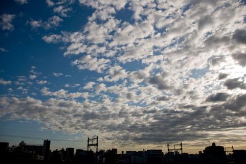 jishingumo-img01.jpg